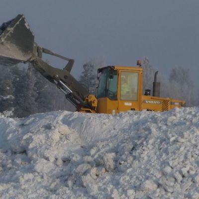 Pyöräkuormaaja siirtää lunta lumenkaatopaikalla.
