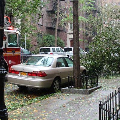 Katu New Yorkissa myrskyn jäljiltä. Paloauto. Kaatunut puu.