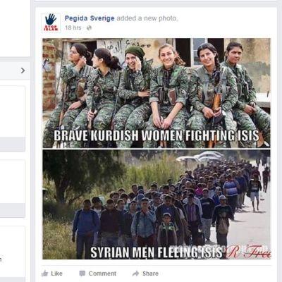 Kuvakaappaus Ruotsin Pegidan facebook-sivuilta.