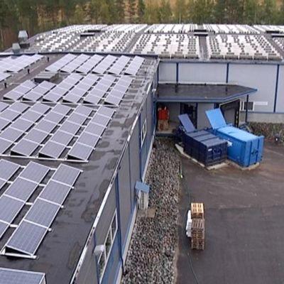 Aurinkovoimala Urajärvellä.