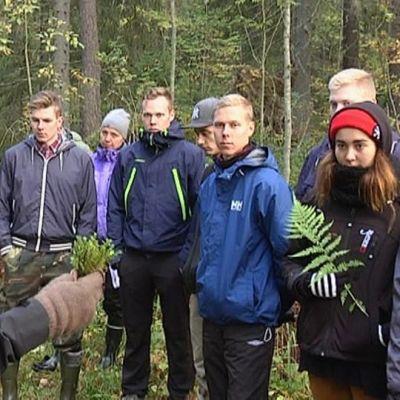 Metsäalan opiskelijoita Hyytiälän metsäasemalla Juupajoella.