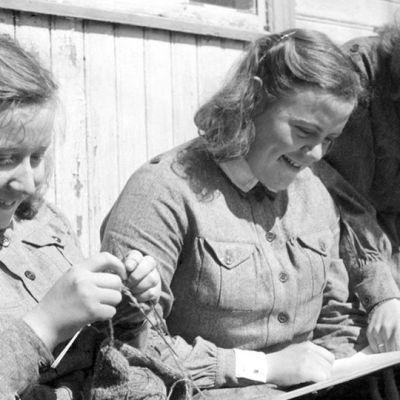 Lottia jatkosodan aikana.