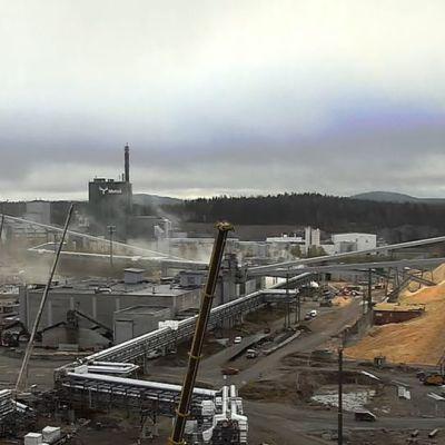 Kuvakaappaus Metsä Fibren Äänekosken tehtaan nettikamerasta.