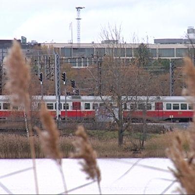 Kaksi junaa syysmaisemassa