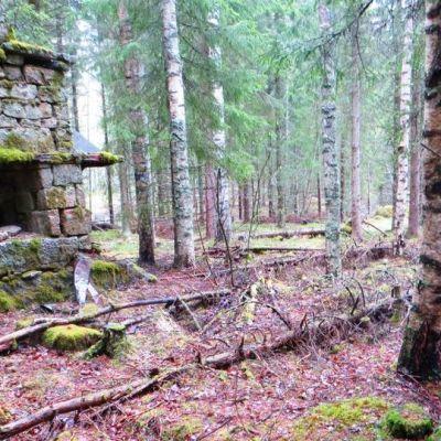 Koiviston tilan rauniouuni on Keski-Suomen ensimmäinen adoptiolla vaalittava muinaiskohde.