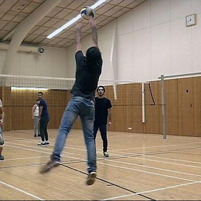Turvapaikanhakijat pelaavat lentopalloa