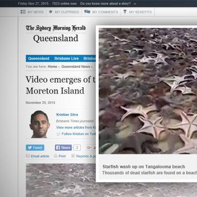 Kuvakaappaus The Sydney Morning Heraldin sivuilta.
