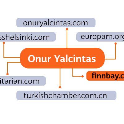 Grafiikka Onur Yalcintasin kytköksistä.