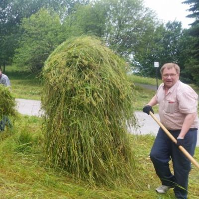 Vapaaehtoiset heinämiehet heiluivat Turun Fleminginpuiston heinätalkoissa.