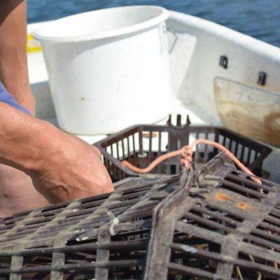 Rapumertoja veneessä
