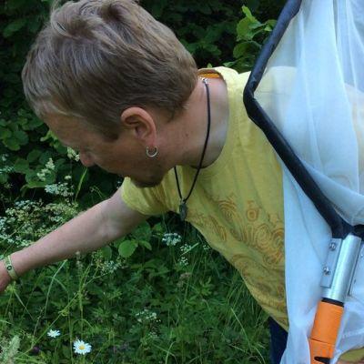Petri Parkko etsii putkikasvien versilta pujamaluteita. Hänellä on haavi toisessa kädessään.