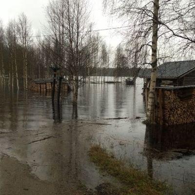 Tulviva piha ja autotie Pudasjärven taajamassa.