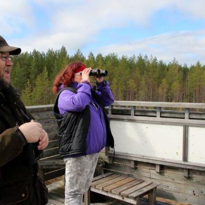 Luonto- ja ympäristöalan lehtori Juha Miettinen ja ympäristöhoitajaksi opiskeleva Riitta Hirvonen tähyilevät kosteikolla viihtyviä lintuja.