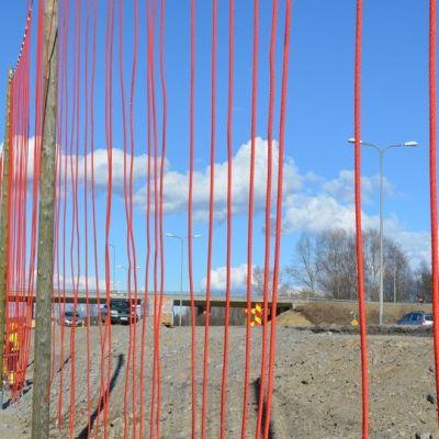 Sata metriä pitkän lokkiverkon narut ovat aseteltu väljäkseltään, jotteivat lokit jäisi niihin kiinni.