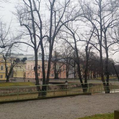 Turun Lilja Runebergin puistossa.