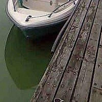 Sinilevälautat ovat vallanneet Saimaata Lappeenrannan edustalla.