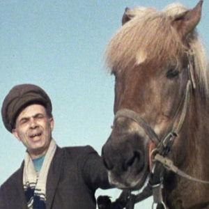 Romanimies ja hevonen