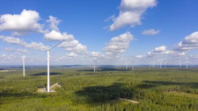 Ett tiotal vindkraftverk som syns högt över skogen i soligt väder