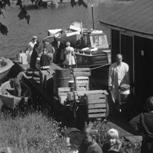 Kuljetusalus saapuu Haapasaareen 1964