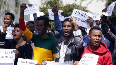 Demonstranter i Etiopiens huvudstad Addis Abeba protesterade i september mot att regeringen har tillåtit en del hjälpförsändelser till Tigray.