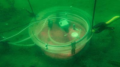 Bild av kammare på havsbottnet där vattnet värms upp med golvvärme.