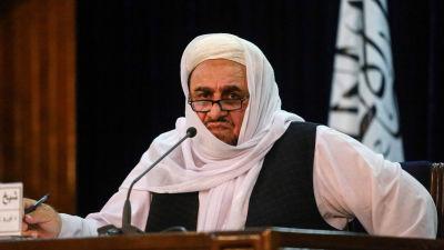 Sheikh Abdul Baqi Haqqani, talibanregeringens vice utbildningsminister.