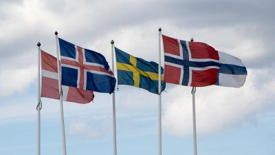 De fem nordiska flaggorna vajar i vinden.