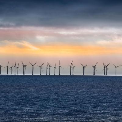 Vindturbiner på rad till havs utanför Danmark.