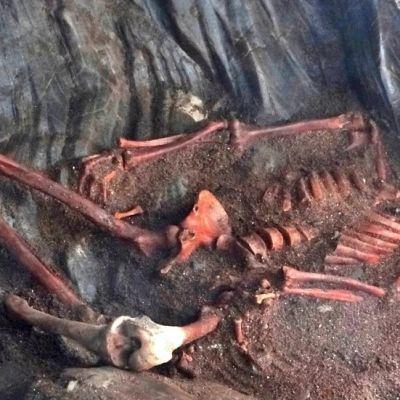 Luuranko, jonka kallo on murskana ja jalat nilkat ristissä.