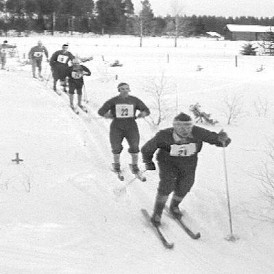 Tervahiihto Oulussa 1960