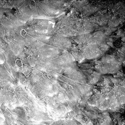 Mustavalkoinen kuva maastossa risteleilevistä viivoista, jotka johtavat ympyröihin. Maastossa viivat olivat aitoja
