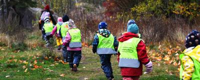 Alla barn i dagisgruppen Valhajarna springer på rad på en stig på Drumsö. Barnen har på sig reflexväst. Höstfärgade löv ligger på marken.