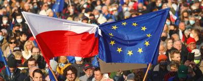 Bild på folkmassa där personer håller upp Polens och EU:s flagga.