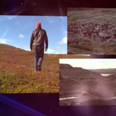 lappländska landskap och renar