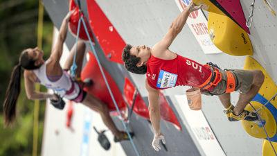 Sascha Lehmann klättrar.