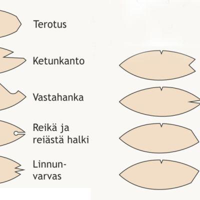 Kuvassa 14 poronhoitoasetuksessa lueteltua ja lisäksi kolme Paliskuntain yhdistyksen hyväksymää lisämerkkiä.