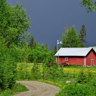 maalaismaisemassa punainen mökki ja lipputangossa liehuva Suomen lippu