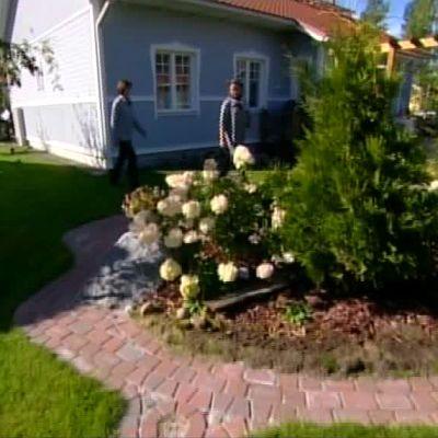 Bloggarens trädgård
