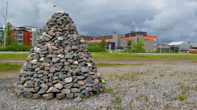 stenkummel på västra åstranden i borgå
