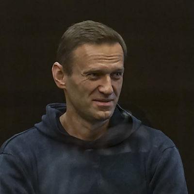 Aleksej Navalnyj i rättssalen i Moskva