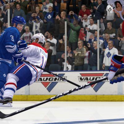 NHL 14 Änäri peli