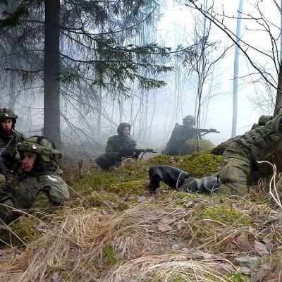 Panssarijääkäreitä sotaharjoituksessa