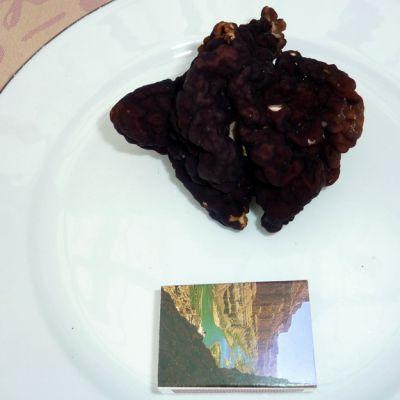 Korvasieni lautasella