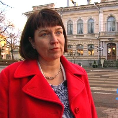 Mikaela Nylander säger att det varit svårt att driva skärgårdsfrågor under den här riksdagsperioden.