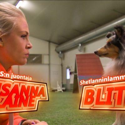 Susanna Laine (PS:n juontaja) ja agilitymestarikoira Blitz