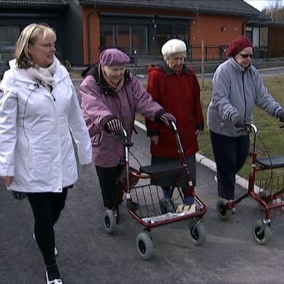 perhekodin asukkaat ulkoilevat pihapiirissä