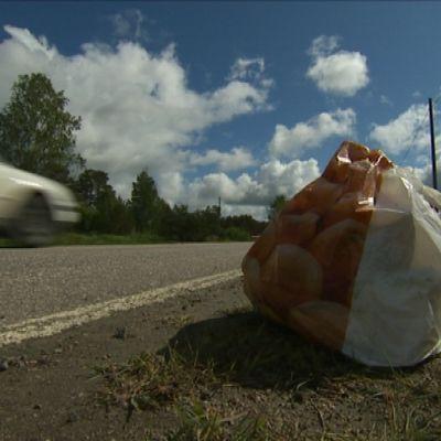 Soppåsen vid Skärgårdsvägen var fastsatt i marken med en pinne.
