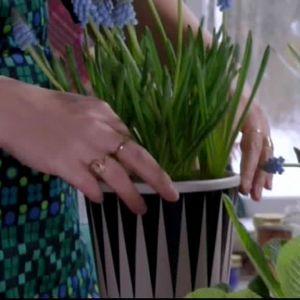 Plantera växter i dina nydekorerade krukor.