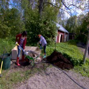 Anne och Lotta preparerar odlingslådan.