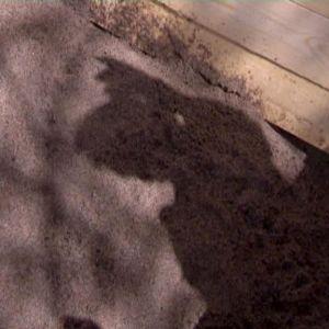Mullen skall vara blandad med sand.